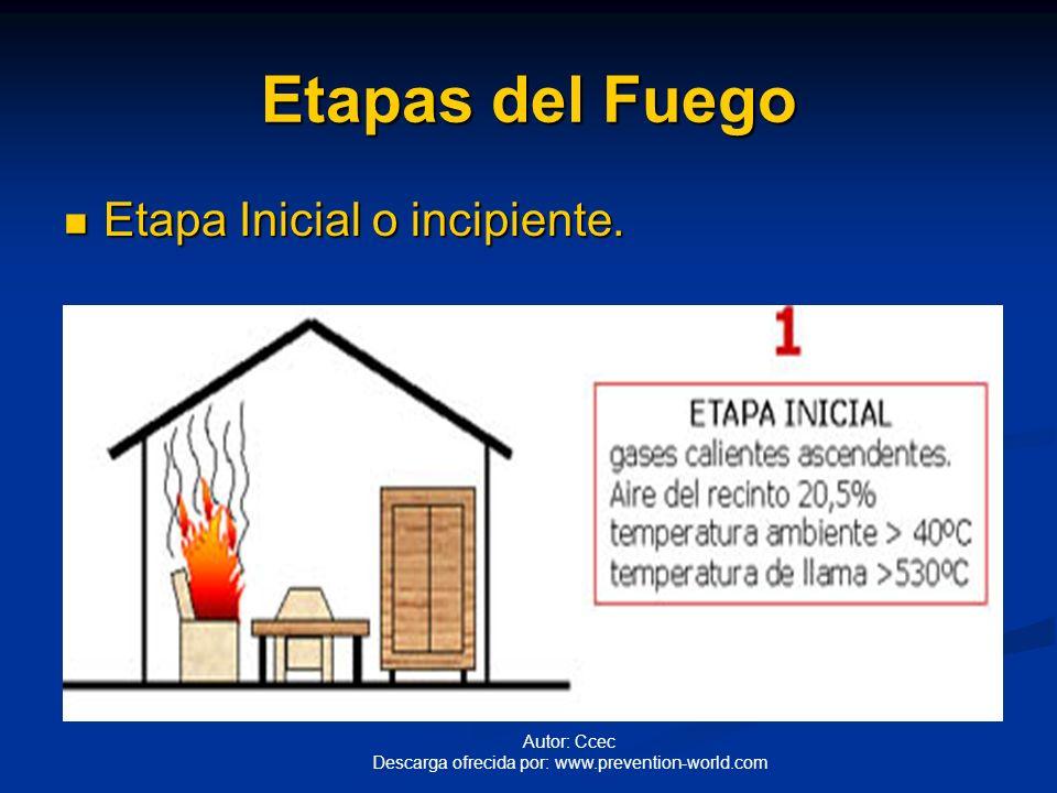 Etapas del Fuego Etapa inicial o incipiente Etapa inicial o incipiente Etapa de combustión libre Etapa de combustión libre Etapa de arder sin llama Et