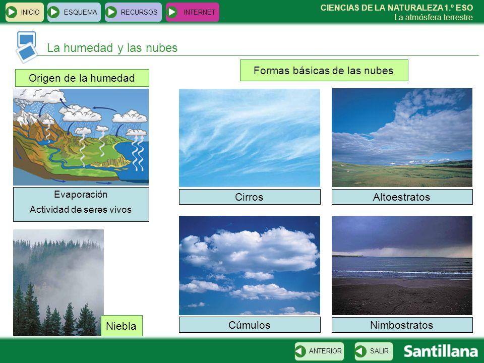 CIENCIAS DE LA NATURALEZA 1.º ESO La atmósfera terrestre Origen de la humedad INICIOESQUEMARECURSOSINTERNET La humedad y las nubes SALIRANTERIOR Niebl