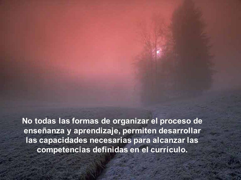 No todas las formas de organizar el proceso de enseñanza y aprendizaje, permiten desarrollar las capacidades necesarias para alcanzar las competencias
