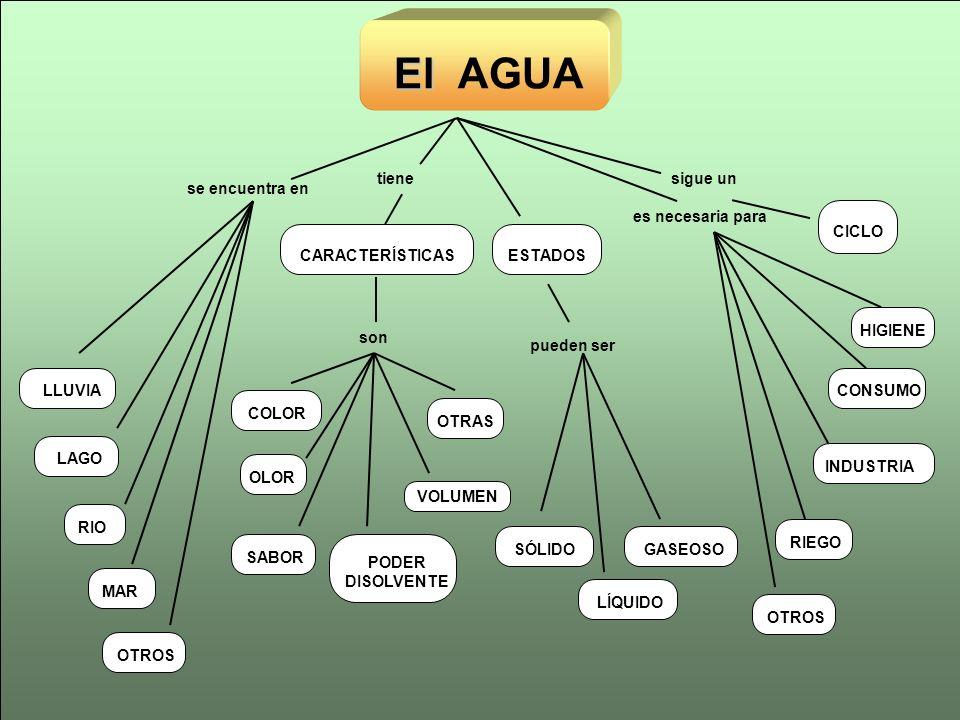 El El AGUA RIOLLUVIACOLORSABOROTRASLAGO VOLUMEN OLOR PODER DISOLVENTE MAROTROS se encuentra en son CARACTERÍSTICAS tiene RIEGOCONSUMOINDUSTRIAOTROS si