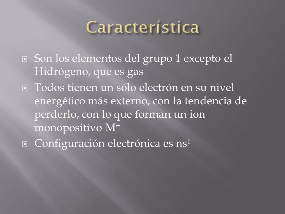 Son los elementos del grupo 1 excepto el Hidrógeno, que es gas Todos tienen un sólo electrón en su nivel energético más externo, con la tendencia de p