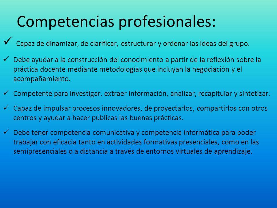 Competencias profesionales: Capaz de dinamizar, de clarificar, estructurar y ordenar las ideas del grupo. Debe ayudar a la construcción del conocimien