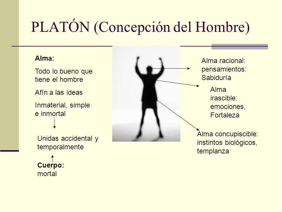 PLATÓN (Concepción del Hombre) Cuerpo: mortal Alma: Todo lo bueno que tiene el hombre Afín a las ideas Inmaterial, simple e inmortal Unidas accidental