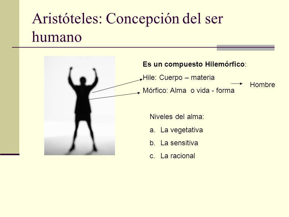 Aristóteles: Concepción del ser humano Es un compuesto Hilemórfico: Hile: Cuerpo – materia Mórfico: Alma o vida - forma Hombre Niveles del alma: a.La