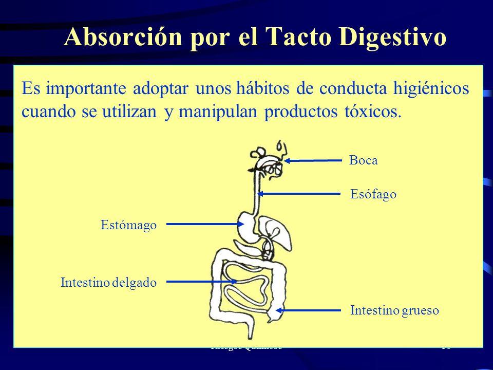 Riesgos Químicos10 Absorción por el Tacto Digestivo Es importante adoptar unos hábitos de conducta higiénicos cuando se utilizan y manipulan productos
