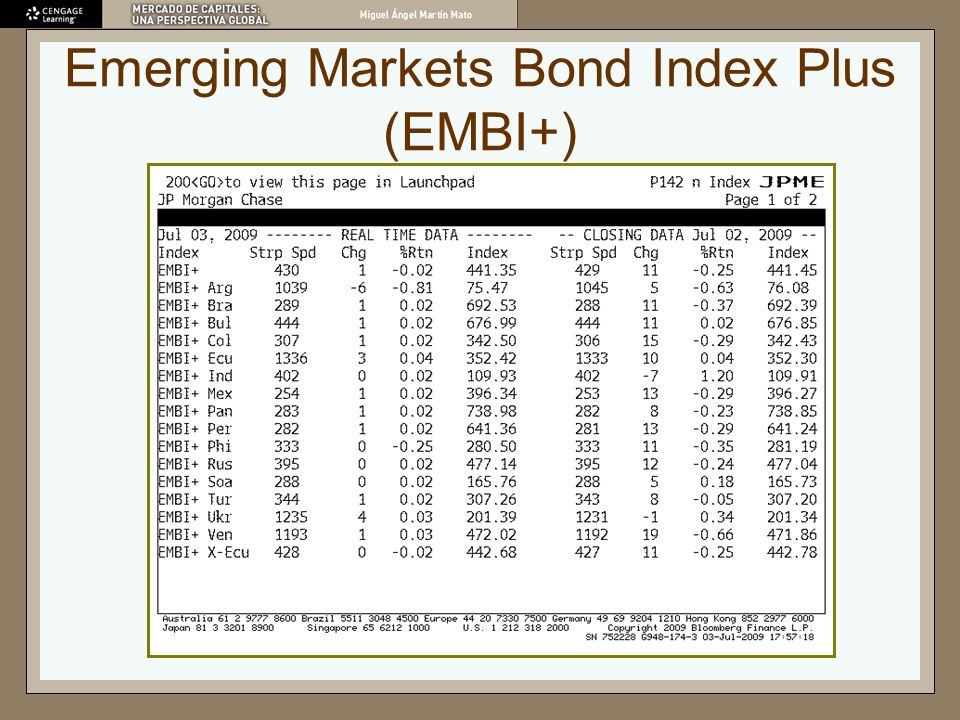 Emerging Markets Bond Index Plus (EMBI+)