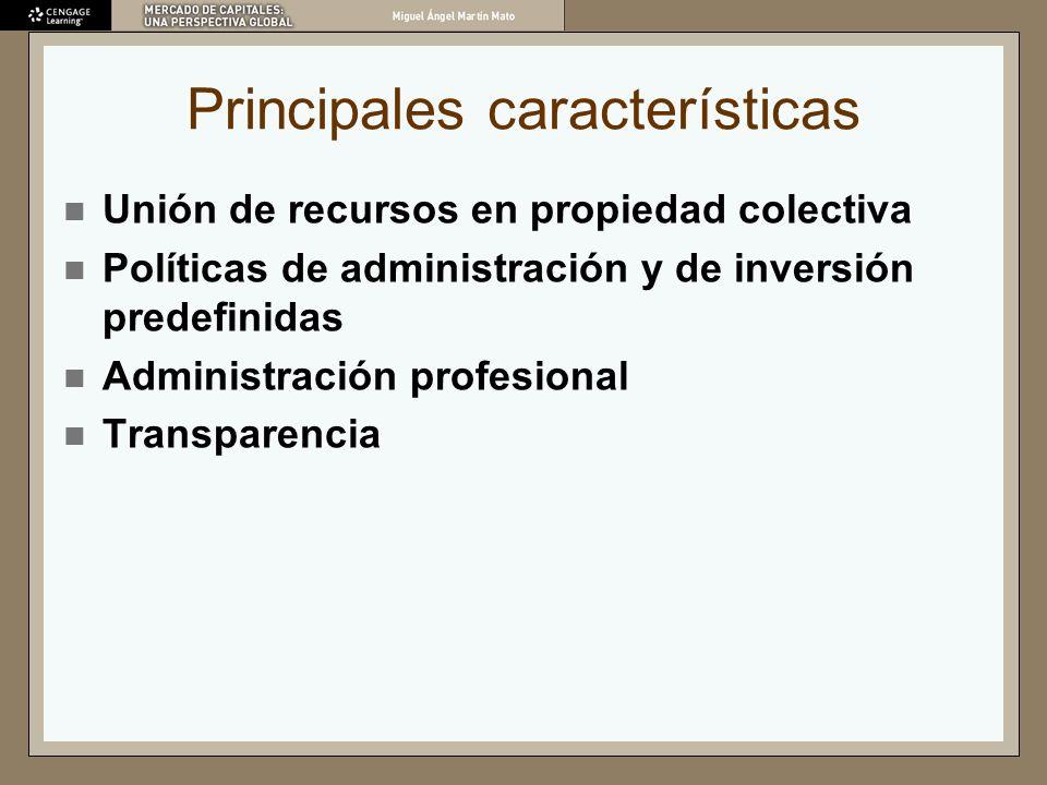 Principales características Unión de recursos en propiedad colectiva Políticas de administración y de inversión predefinidas Administración profesiona