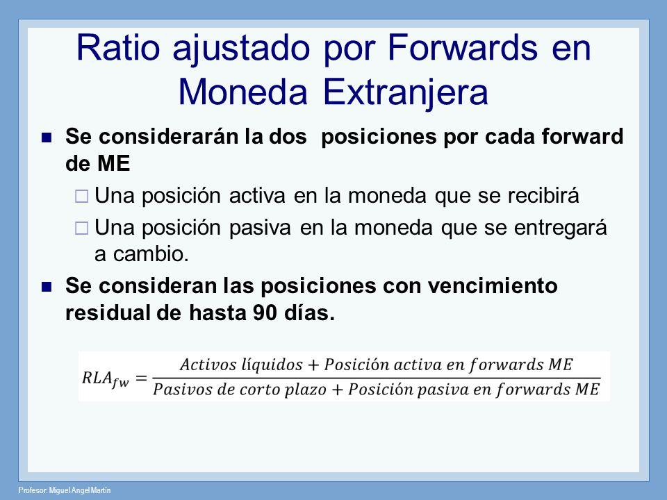 Profesor: Miguel Angel Martín Ratio ajustado por Forwards en Moneda Extranjera Se considerarán la dos posiciones por cada forward de ME Una posición a