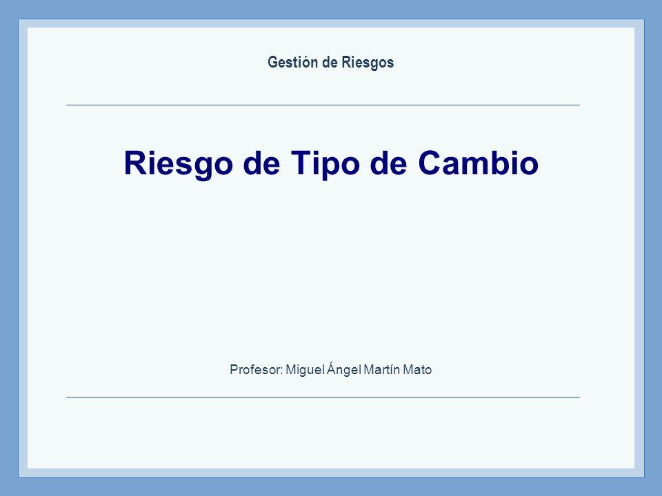 Riesgo de Tipo de Cambio Profesor: Miguel Ángel Martín Mato Gestión de Riesgos