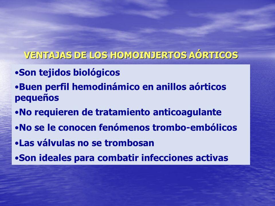 VENTAJAS DE LOS HOMOINJERTOS AÓRTICOS Son tejidos biológicos Buen perfil hemodinámico en anillos aórticos pequeños No requieren de tratamiento anticoa