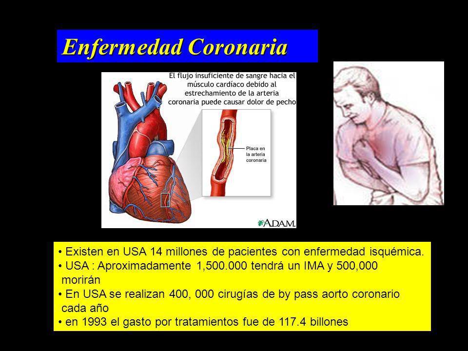 Enfermedad Coronaria Existen en USA 14 millones de pacientes con enfermedad isquémica. USA : Aproximadamente 1,500.000 tendrá un IMA y 500,000 morirán