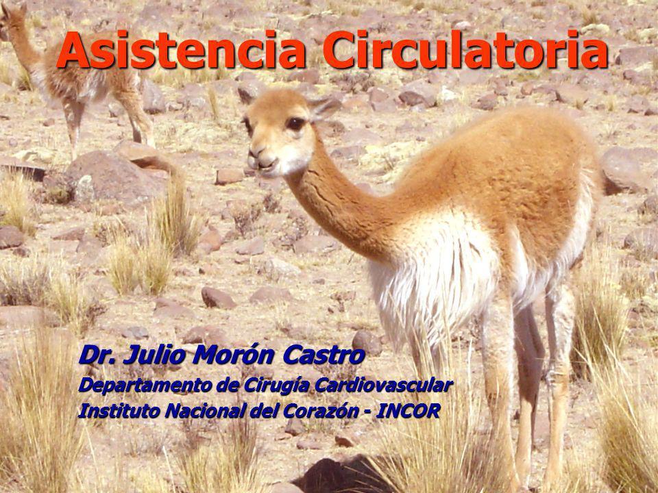 Asistencia Circulatoria Dr. Julio Morón Castro Departamento de Cirugía Cardiovascular Instituto Nacional del Corazón - INCOR