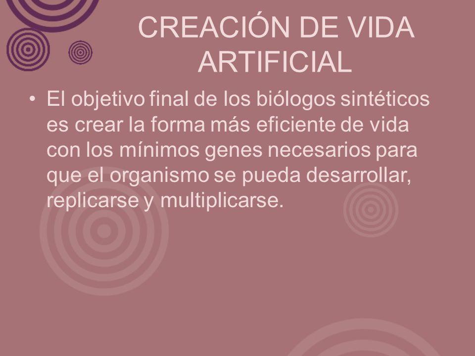 CREACIÓN DE VIDA ARTIFICIAL El objetivo final de los biólogos sintéticos es crear la forma más eficiente de vida con los mínimos genes necesarios para