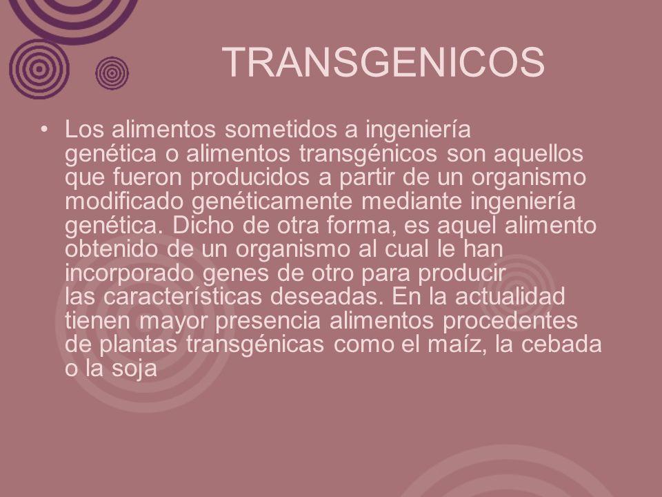 TRANSGENICOS Los alimentos sometidos a ingeniería genética o alimentos transgénicos son aquellos que fueron producidos a partir de un organismo modifi