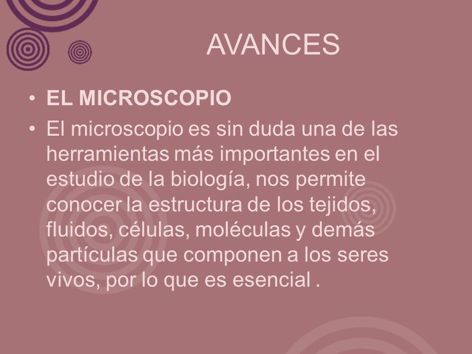 AVANCES EL MICROSCOPIO El microscopio es sin duda una de las herramientas más importantes en el estudio de la biología, nos permite conocer la estruct