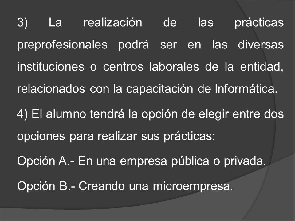 3) La realización de las prácticas preprofesionales podrá ser en las diversas instituciones o centros laborales de la entidad, relacionados con la cap
