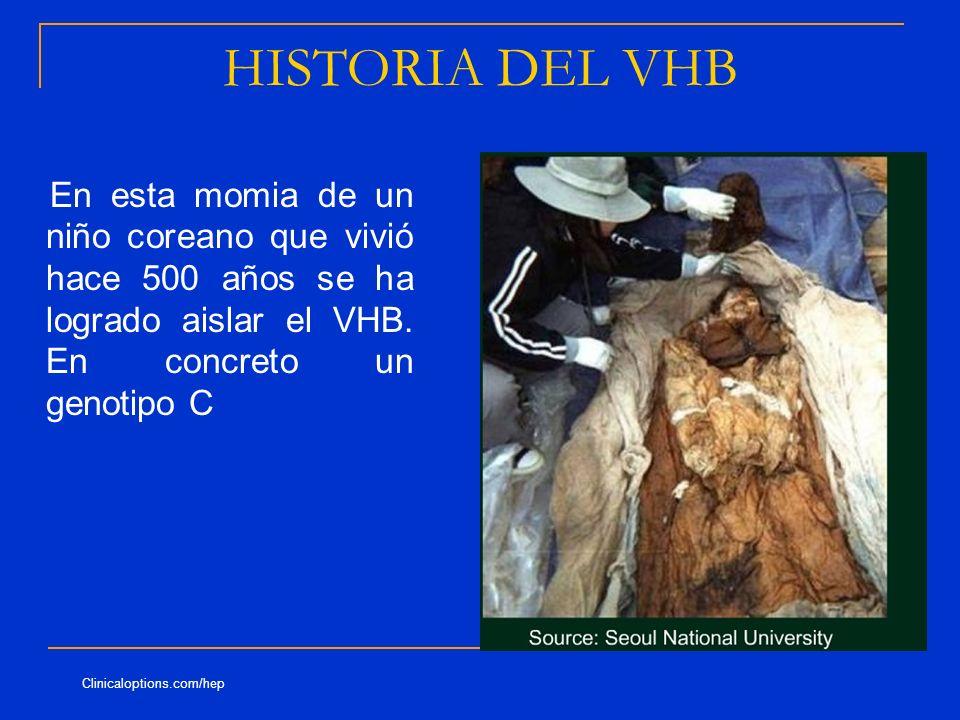 HISTORIA DEL VHB En esta momia de un niño coreano que vivió hace 500 años se ha logrado aislar el VHB. En concreto un genotipo C Clinicaloptions.com/h