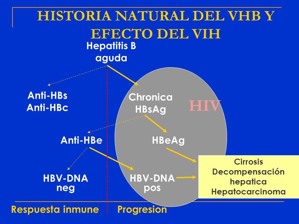 HIV Hepatitis B aguda Anti-HBs Anti-HBc Chronica HBsAg Anti-HBeHBeAg HBV-DNA neg HBV-DNA pos Cirrosis Decompensación hepatica Hepatocarcinoma Respuest
