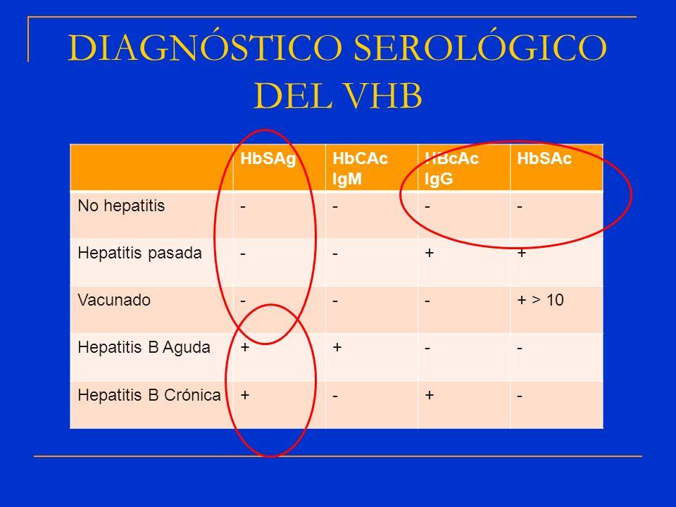 DIAGNÓSTICO SEROLÓGICO DEL VHB HbSAgHbCAc IgM HBcAc IgG HbSAc No hepatitis---- Hepatitis pasada--++ Vacunado---+ > 10 Hepatitis B Aguda++-- Hepatitis
