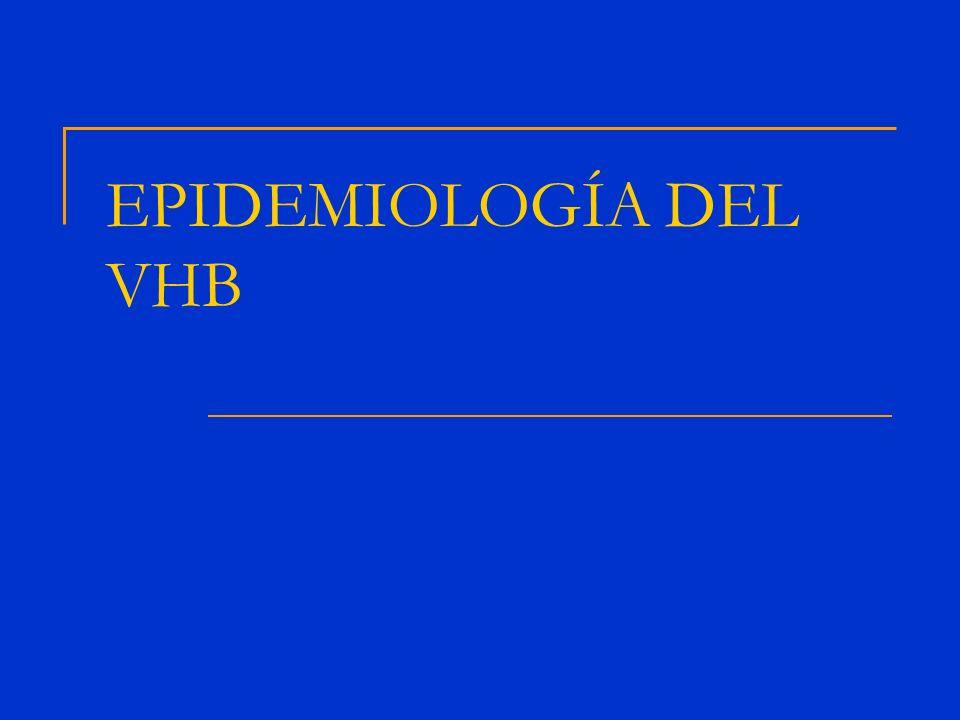 >8% - Alta 2-7% - Intermedia <2% - Baja PREVALENCIA DEL VHB 15-25% morirán de cirrosis o hepatocarcinoma 350-400*10 6 de personas están infectadas por el VHB en todo el mundo 2%