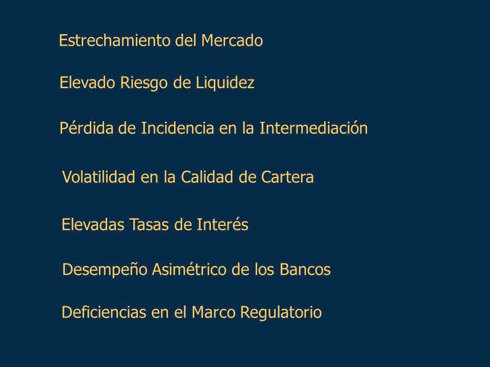 Estrechamiento del Mercado Elevado Riesgo de Liquidez Pérdida de Incidencia en la Intermediación Volatilidad en la Calidad de Cartera Elevadas Tasas de Interés Desempeño Asimétrico de los Bancos Deficiencias en el Marco Regulatorio