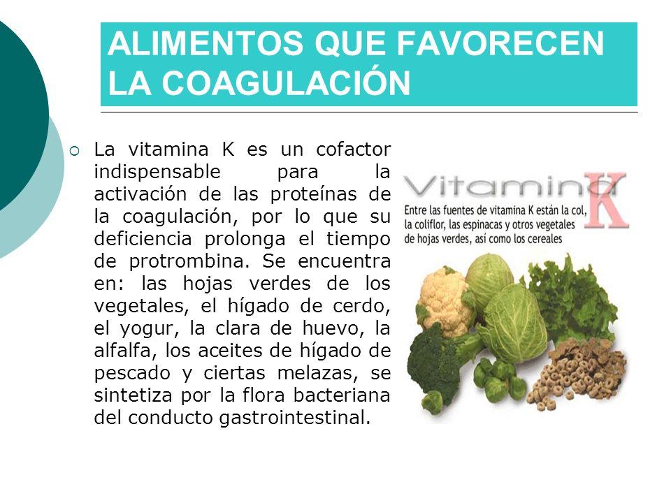 ALIMENTOS QUE FAVORECEN LA COAGULACIÓN La vitamina K es un cofactor indispensable para la activación de las proteínas de la coagulación, por lo que su