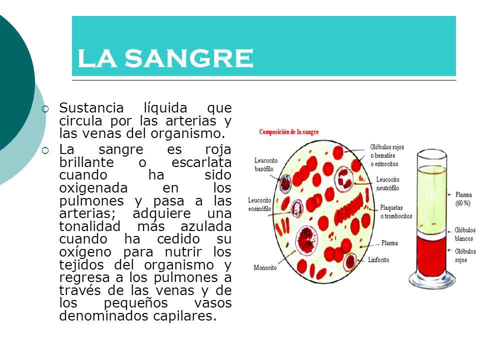 LA SANGRE Sustancia líquida que circula por las arterias y las venas del organismo. La sangre es roja brillante o escarlata cuando ha sido oxigenada e