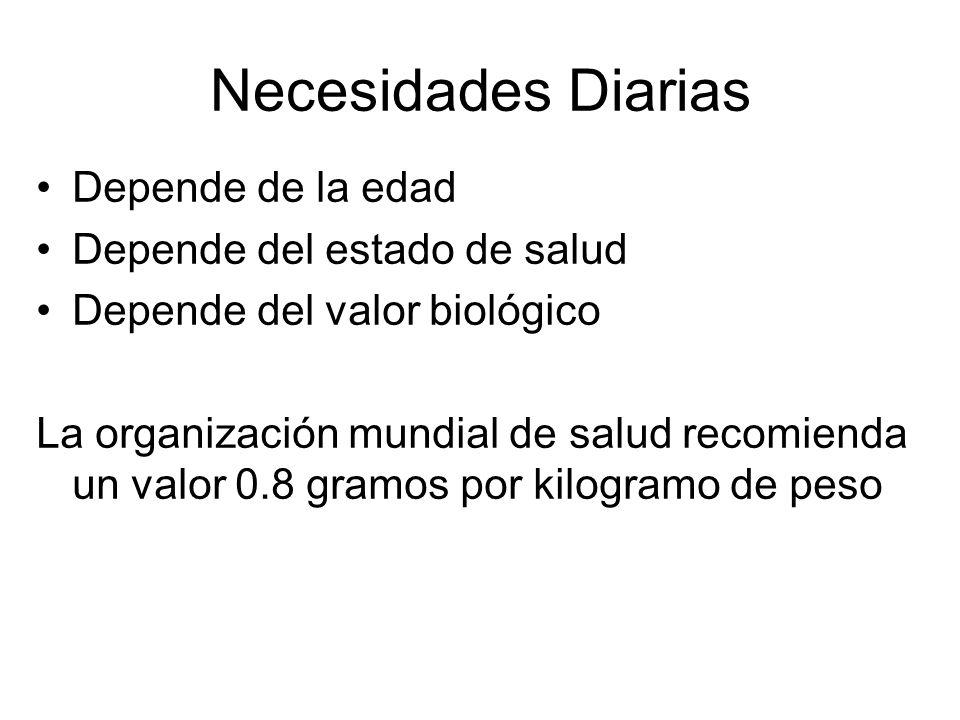 Necesidades Diarias Depende de la edad Depende del estado de salud Depende del valor biológico La organización mundial de salud recomienda un valor 0.