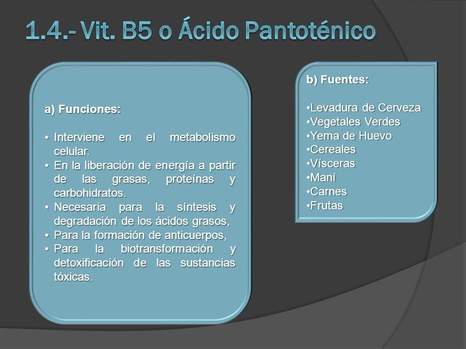a) Funciones: Interviene en el metabolismo celular.Interviene en el metabolismo celular. En la liberación de energía a partir de las grasas, proteínas
