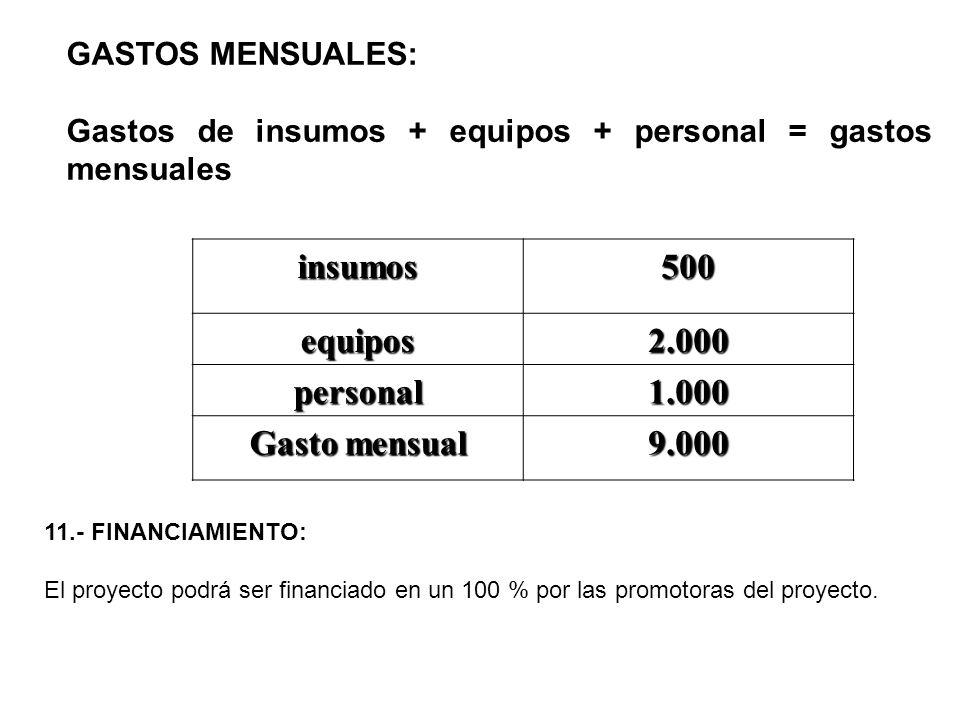 GASTOS MENSUALES: Gastos de insumos + equipos + personal = gastos mensuales insumos500 equipos2.000 personal1.000 Gasto mensual 9.000 11.- FINANCIAMIE