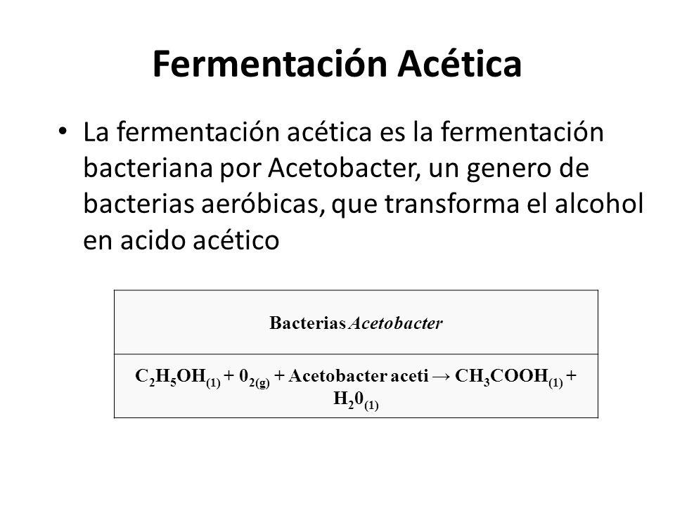 Fermentación Acética La fermentación acética es la fermentación bacteriana por Acetobacter, un genero de bacterias aeróbicas, que transforma el alcoho