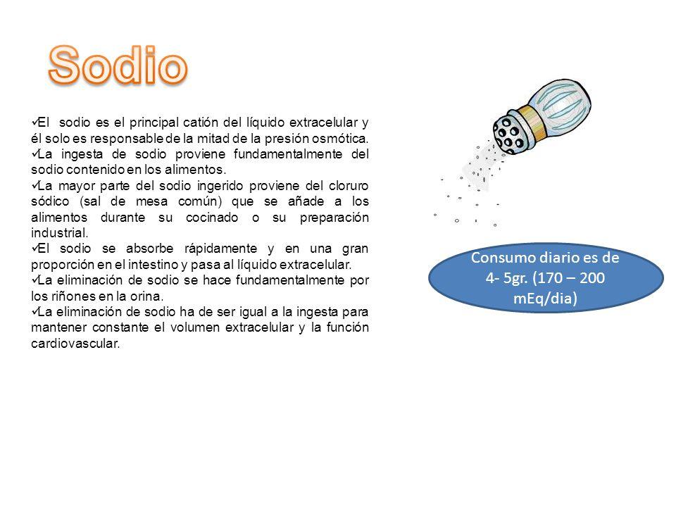 El sodio es el principal catión del líquido extracelular y él solo es responsable de la mitad de la presión osmótica. La ingesta de sodio proviene fun