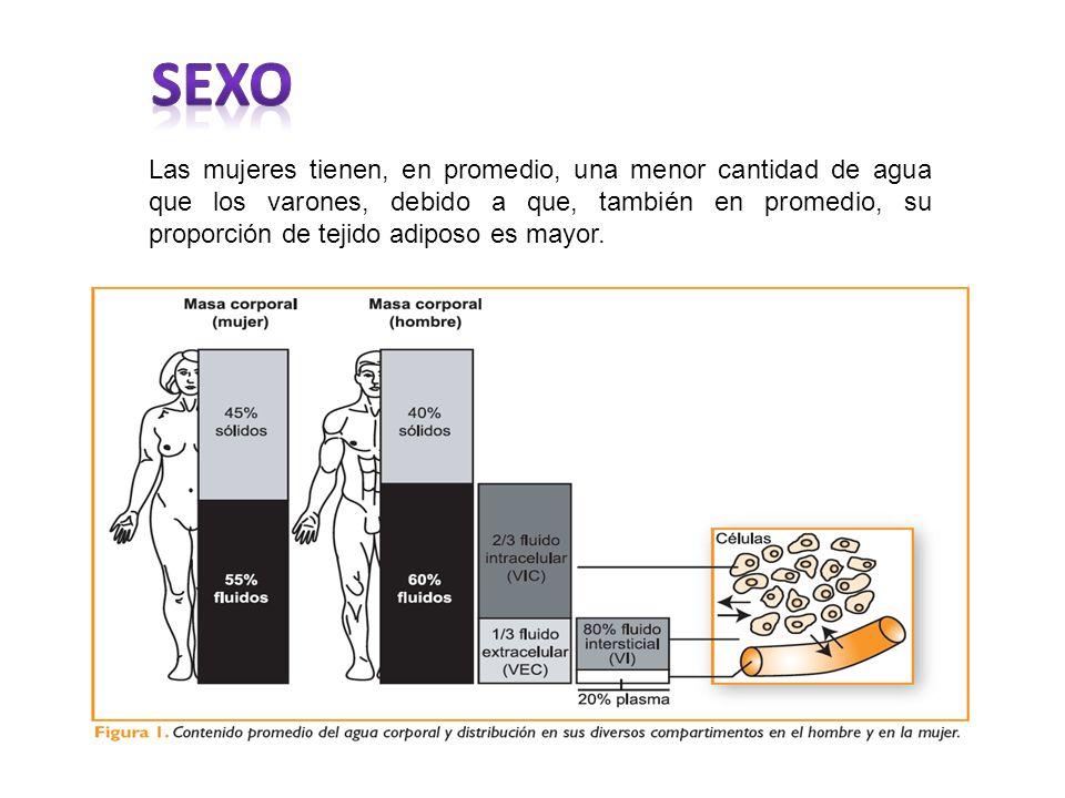 El sodio es el principal catión del líquido extracelular y él solo es responsable de la mitad de la presión osmótica.