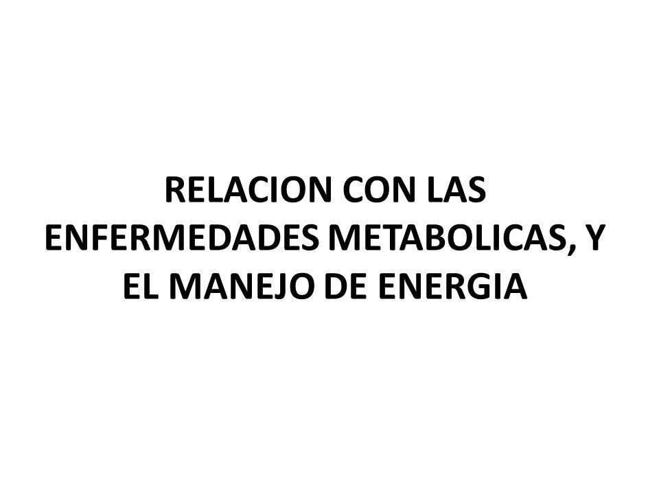 RELACION CON LAS ENFERMEDADES METABOLICAS, Y EL MANEJO DE ENERGIA