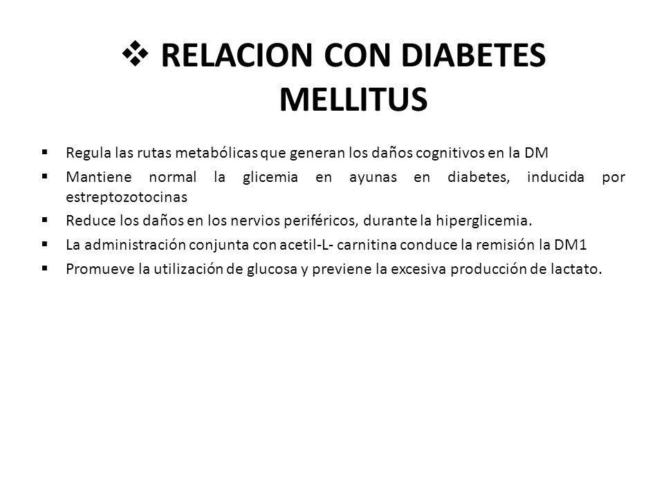 RELACION CON DIABETES MELLITUS Regula las rutas metabólicas que generan los daños cognitivos en la DM Mantiene normal la glicemia en ayunas en diabete