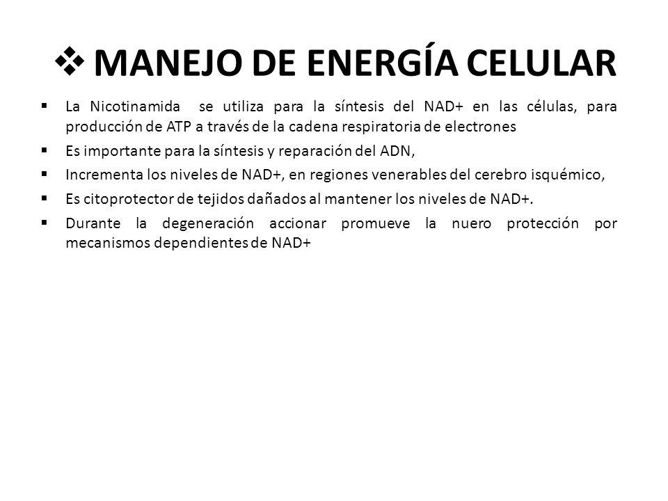 MANEJO DE ENERGÍA CELULAR La Nicotinamida se utiliza para la síntesis del NAD+ en las células, para producción de ATP a través de la cadena respirator