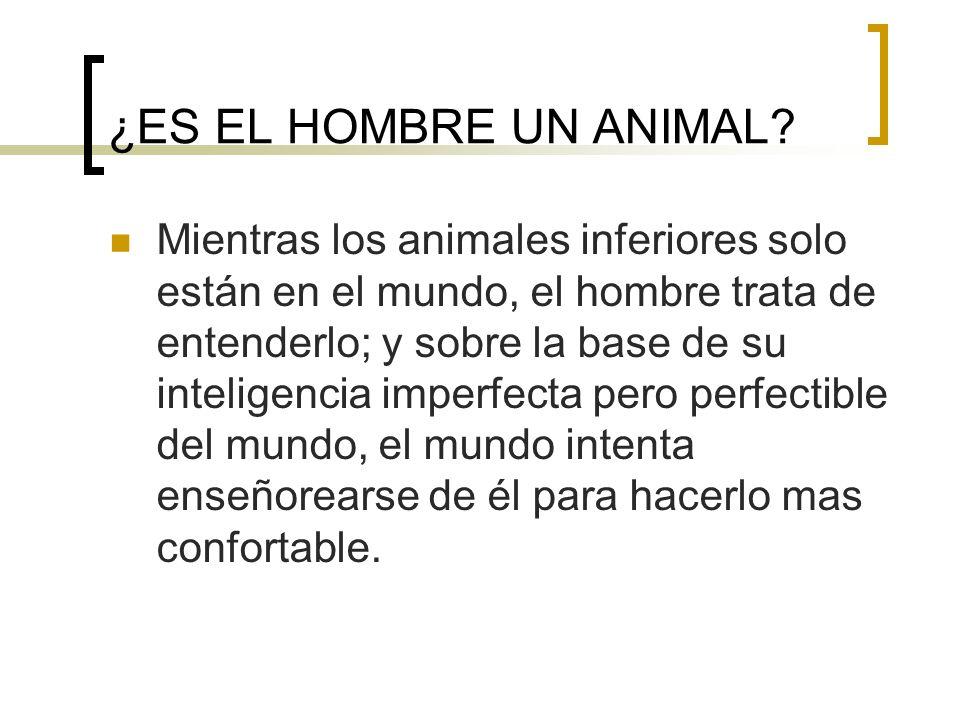 ¿ES EL HOMBRE UN ANIMAL? Mientras los animales inferiores solo están en el mundo, el hombre trata de entenderlo; y sobre la base de su inteligencia im