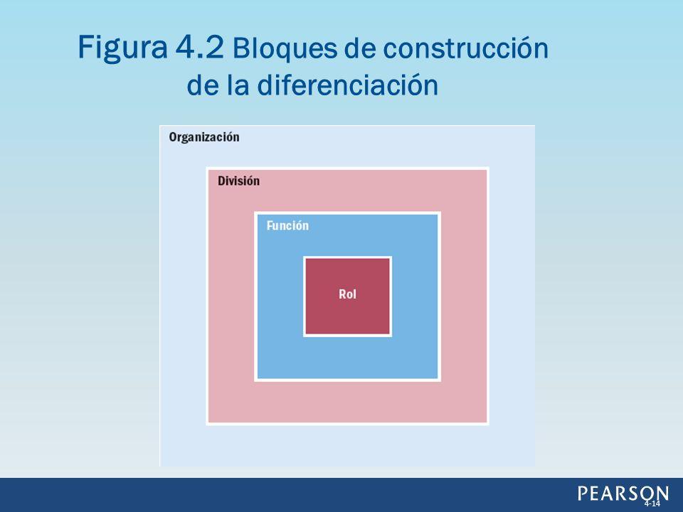 Figura 4.2 Bloques de construcción de la diferenciación 4-14