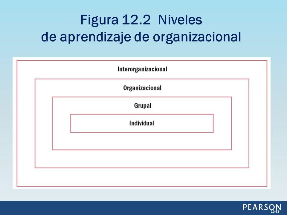 Figura 12.2 Niveles de aprendizaje de organizacional 12-18