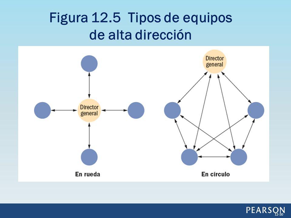 Figura 12.5 Tipos de equipos de alta dirección 12-30