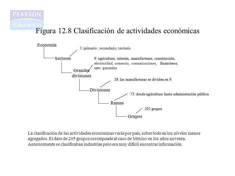 Figura 12.8 Clasificación de actividades económicas Economía Sectores Grandes divisiones Divisiones Ramas Grupos 9: agricultura, minería, manufacturas