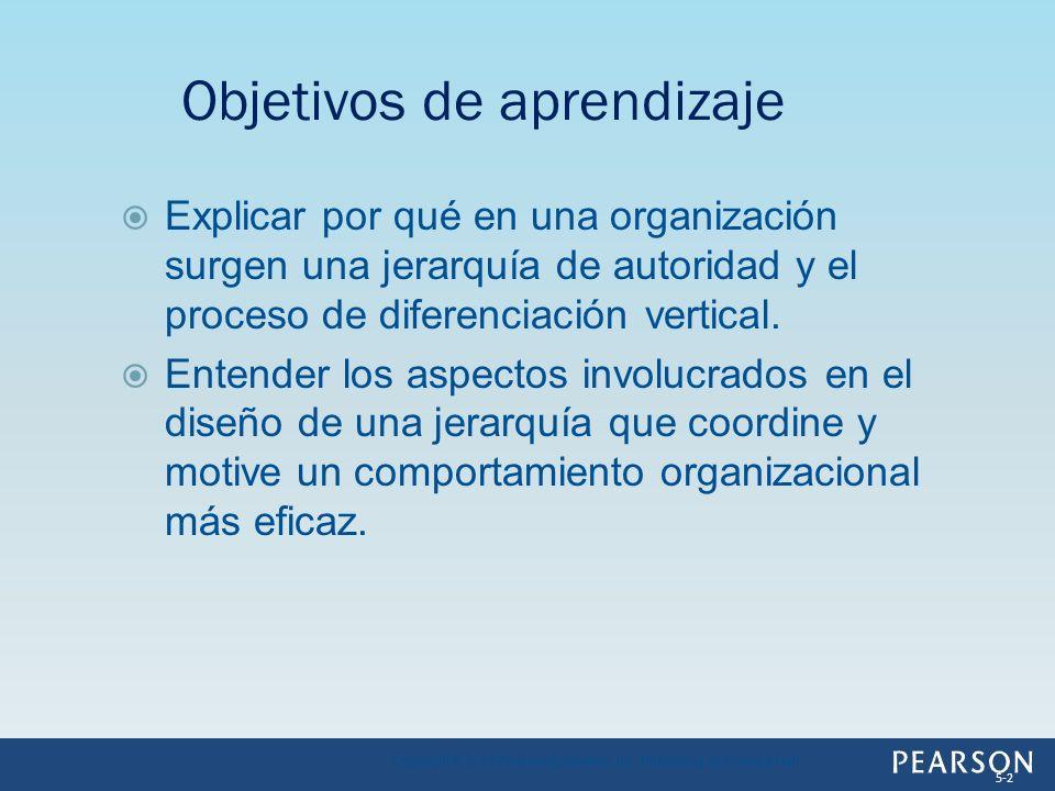 Explicar por qué en una organización surgen una jerarquía de autoridad y el proceso de diferenciación vertical. Entender los aspectos involucrados en