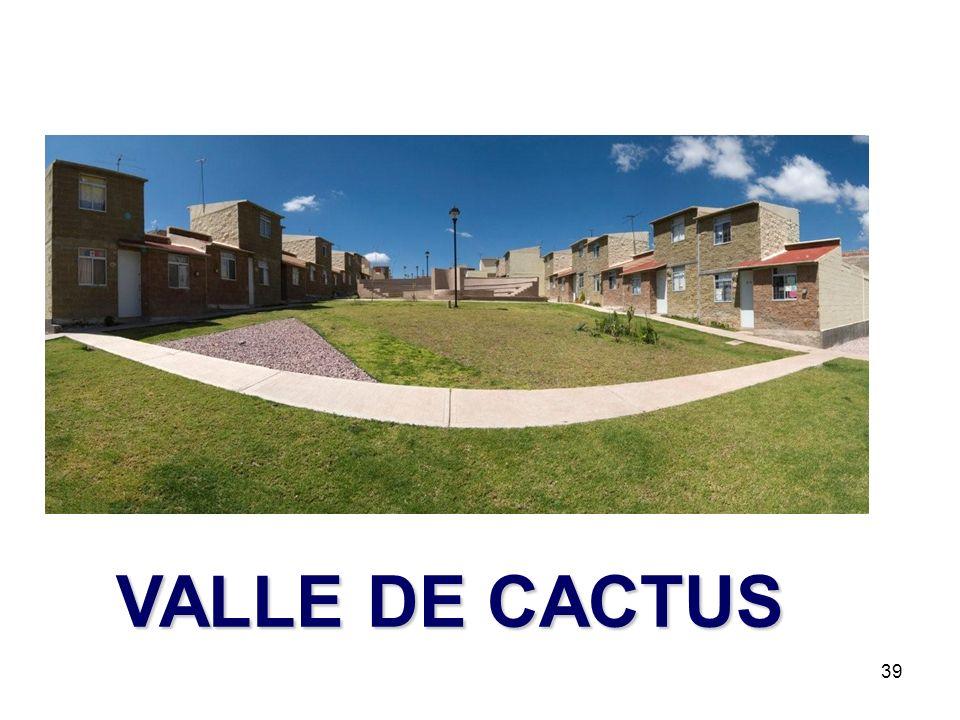 39 VALLE DE CACTUS