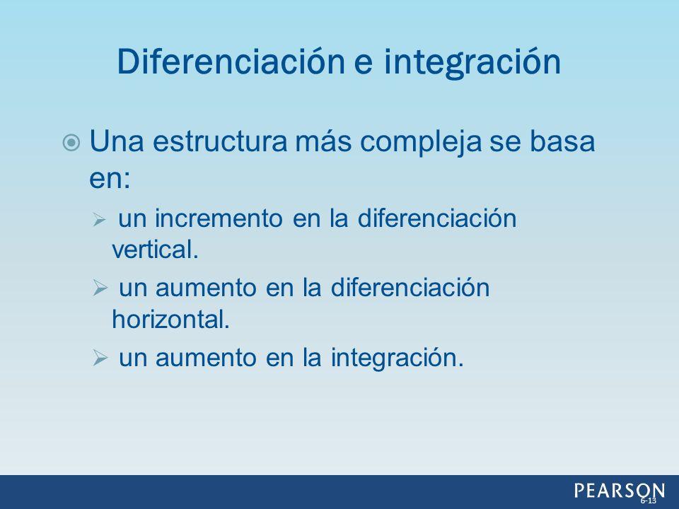 Una estructura más compleja se basa en: un incremento en la diferenciación vertical. un aumento en la diferenciación horizontal. un aumento en la inte