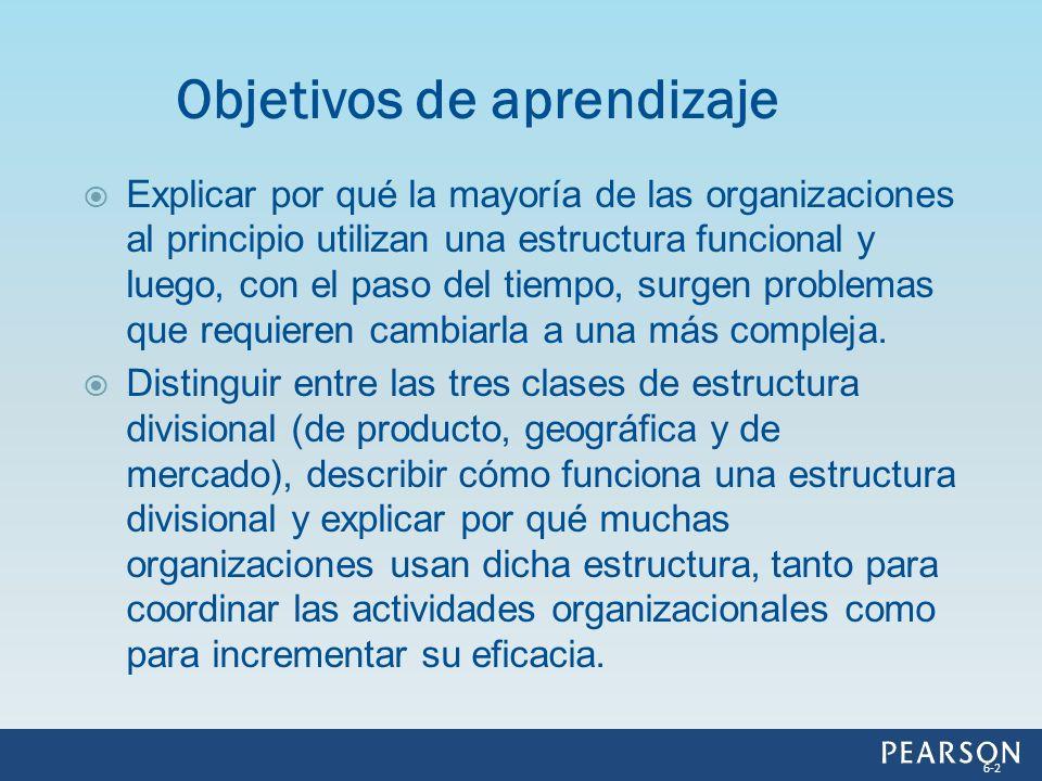 Mayor eficacia organizacional Mayor control Crecimiento rentable Mercado de trabajo interno Ventajas de la estructura multidivisional 6-23