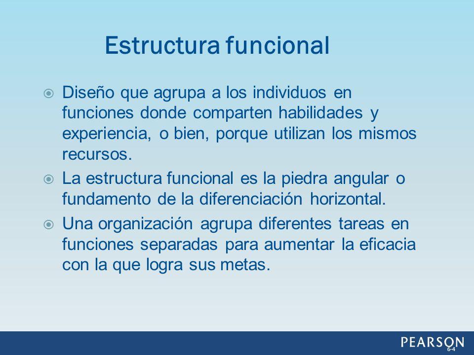 Figura 6.1 Estructura funcional 6-5