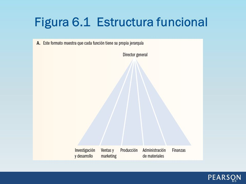 Por lo regular, las organizaciones adoptan la estructura divisional para resolver los problemas de control que surgen cuando se tienen muchos tipos diferentes de bienes, regiones o clientes.