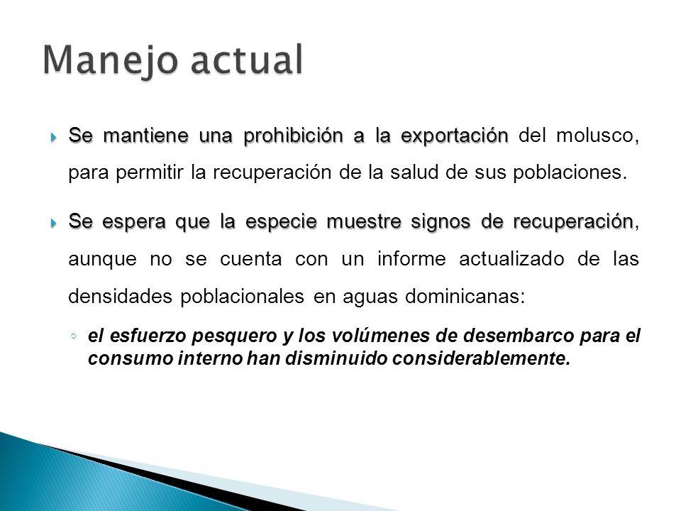 Se mantiene una prohibición a la exportación Se mantiene una prohibición a la exportación del molusco, para permitir la recuperación de la salud de su