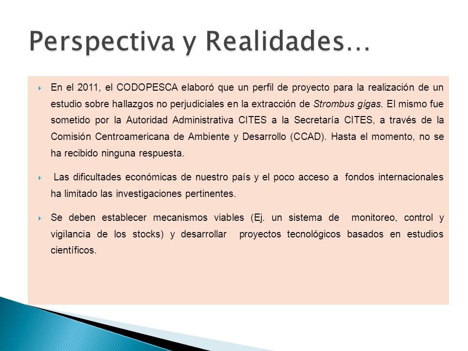En el 2011, el CODOPESCA elaboró que un perfil de proyecto para la realización de un estudio sobre hallazgos no perjudiciales en la extracción de Stro