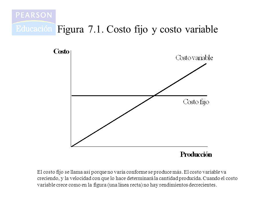 Figura 7.2.Costos unitarios Los costos unitarios son diferentes.